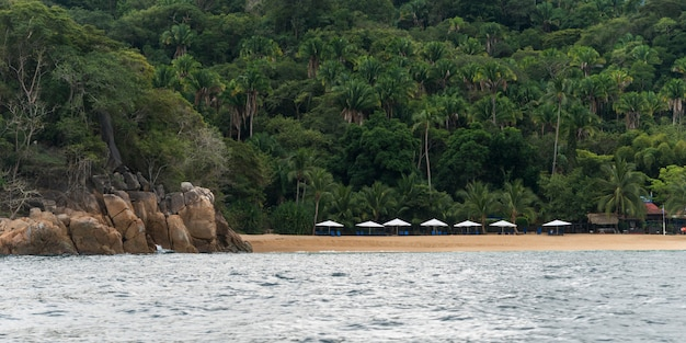 トロピカルビーチ、yelapa、jalisco、メキシコの傘の景観 Premium写真