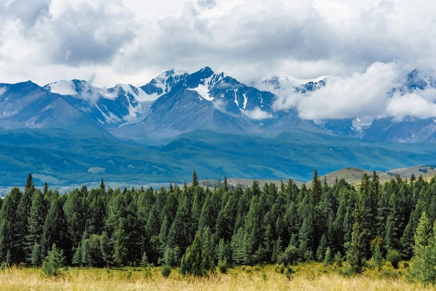 Scenic views of the snow-capped mountains of altai in the kurai steppe Premium Photo