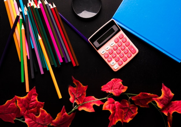 School supplies and red ivy branch scattered on black background Free Photo