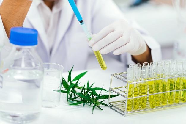 Zkoumání CBDH v laboratořích
