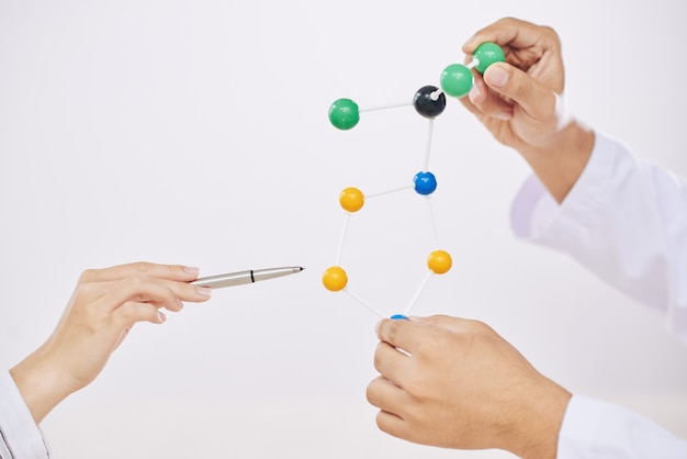 Scientists with molecular model Free Photo