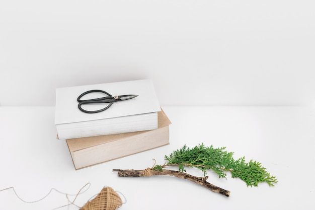 Scissor on two books with thuja twig and spool on white backdrop Free Photo