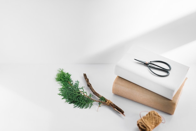 Scissor on two white and brown books with thuja twig and spool on white backdrop Free Photo