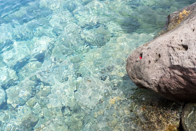 Sea background, ripple surface of transparent water, view of colorful stones bottom underwater Premium Photo