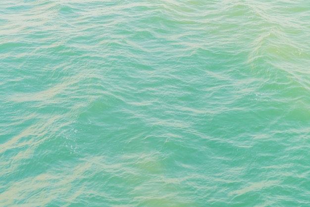 Sea foreground Free Photo