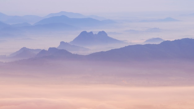 Sea of mist and sunrise background. Premium Photo