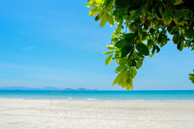Sea resort wild beach Premium Photo