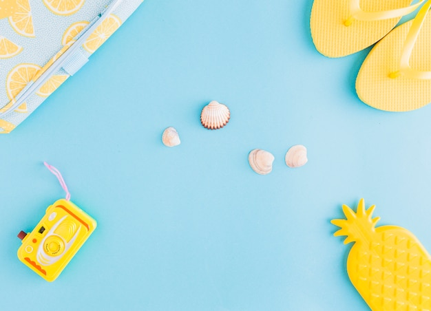 Sea shells and beachfront things on bright background Free Photo