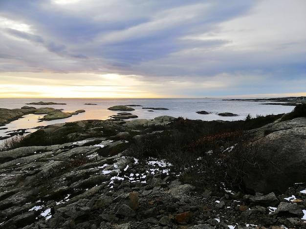 ノルウェーの日没時に曇り空の下で枝に覆われた岩に囲まれた海 無料写真