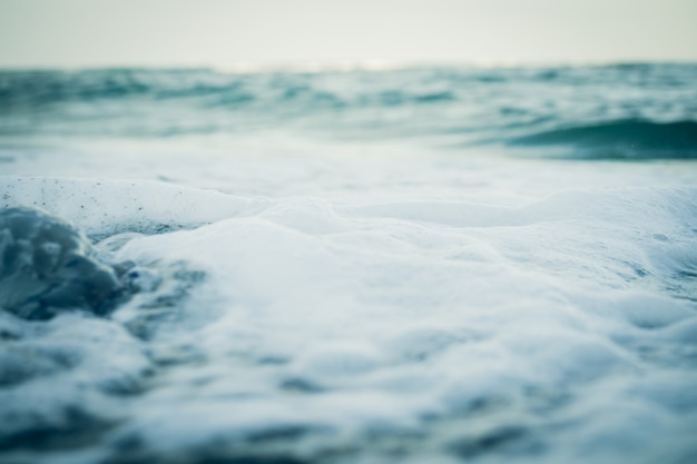 Sea water and foam close-up, cold tone. Premium Photo