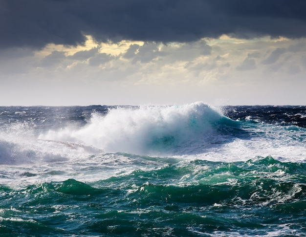 Sea wave during storm Free Photo