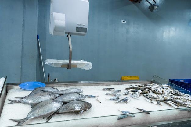 Отдел морепродуктов в продуктовом магазине Premium Фотографии