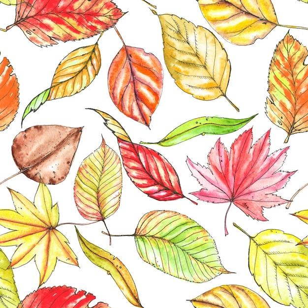 シームレスな手描きの秋のパターン。カラフルなスタイリッシュな別の葉。水彩とインク描画 Premium写真