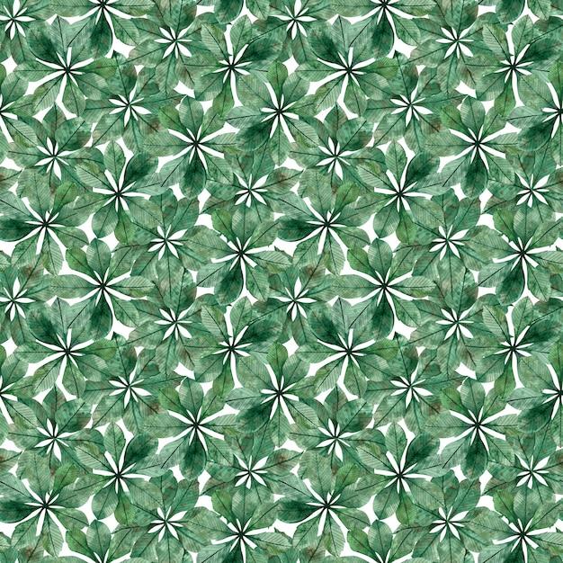 Seamless pattern of chestnut circular leaves Premium Photo