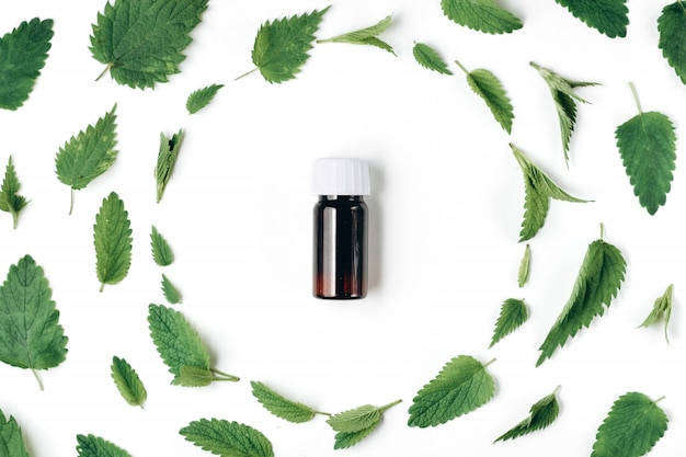 Seamless pattern of fresh nettle, peppermint and bottle of essential oil on Premium Photo
