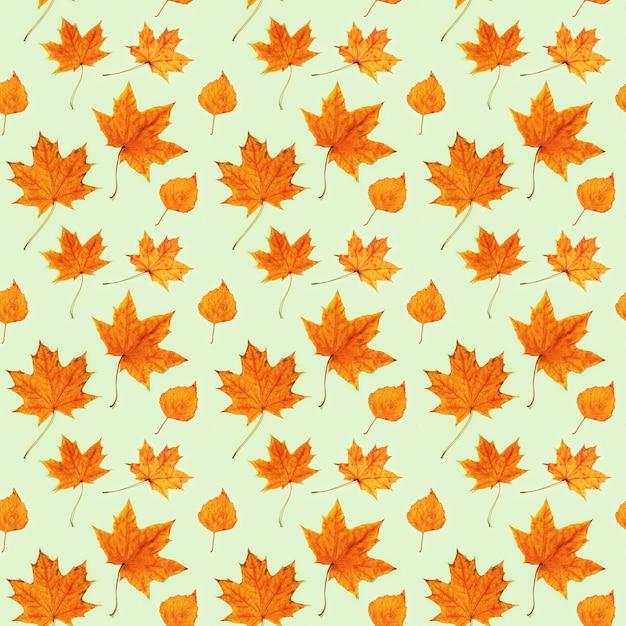 乾燥した紅葉で作られたシームレスなパターン Premium写真