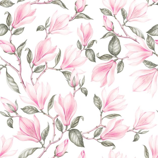 Seamless pattern of magnolia. Premium Photo