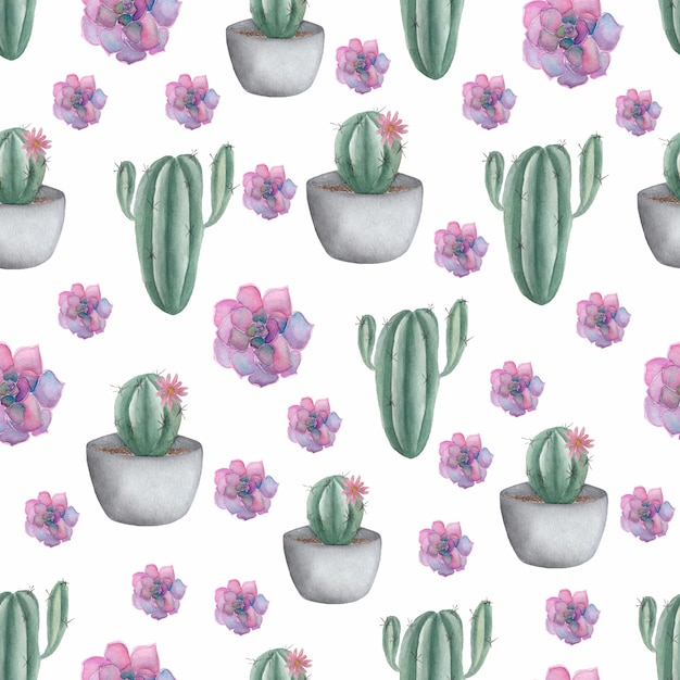 Seamless pattern with cactus  in pot and purple succulents. Premium Photo