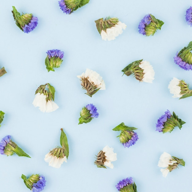 Seamless white and purple flowers on blue background Photo | Free ...