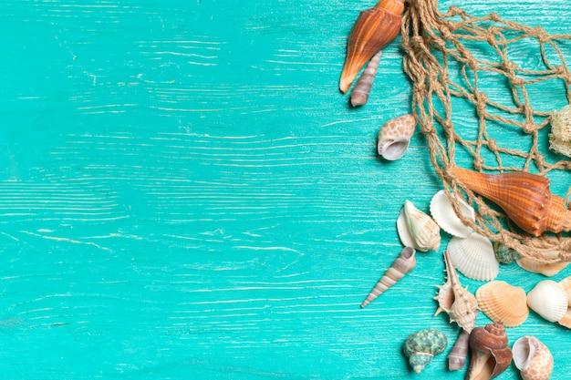 Seashells on blue wooden Premium Photo