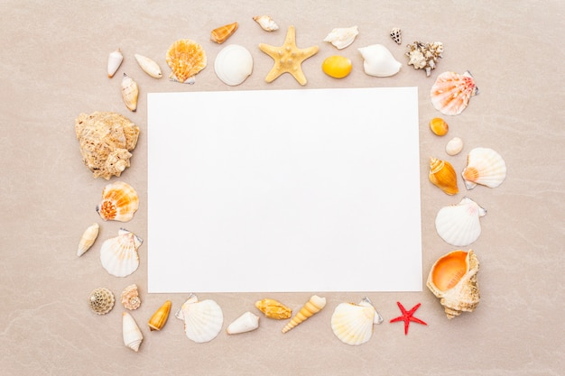 Seashells frame and white blank paper sheet background. card, note, document, top view Premium Photo