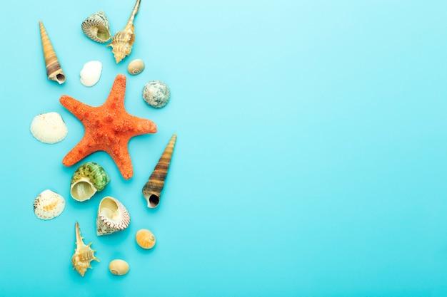 青色の背景に貝殻。休息、リラクゼーション、海、海、夏のコンセプト。 Premium写真