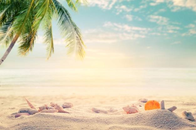 Приморский летний пляж с морскими звездами, ракушками, кораллом на песчаной отмели и размытым морским фоном. концепция летнего времени на пляже. старинный оттенок. Premium Фотографии