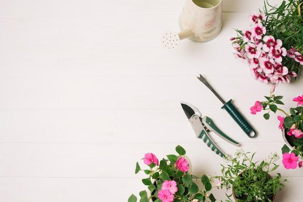 Secateurと咲く花のアレンジメント 無料写真
