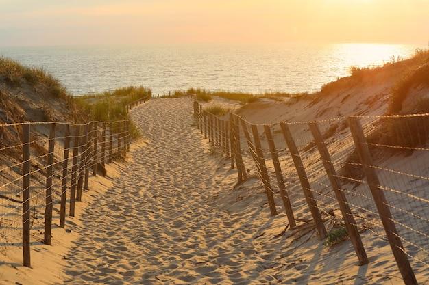 日没時の砂浜への木製の歩道への選択的な焦点 Premium写真