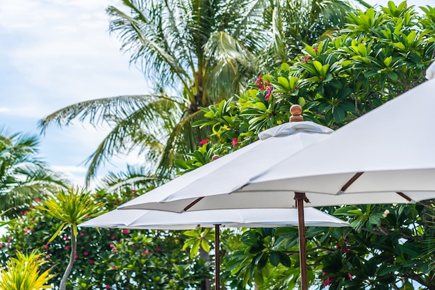 Selective focus point on umbrella with coconut palm tree on the background for holiday vacation Free Photo