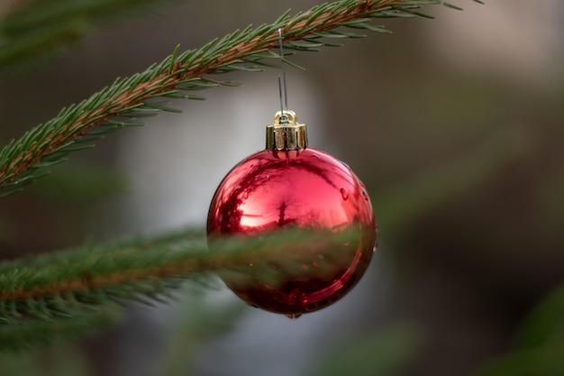 전나무 나무에 매달려 빨간 크리스마스 장식의 선택적 초점 샷 무료 사진