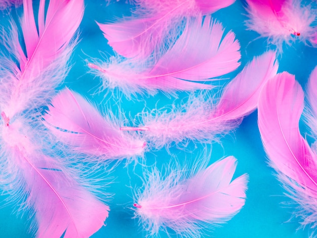 Selective soft focus close up pink feathers texture background in pastel color Premium Photo