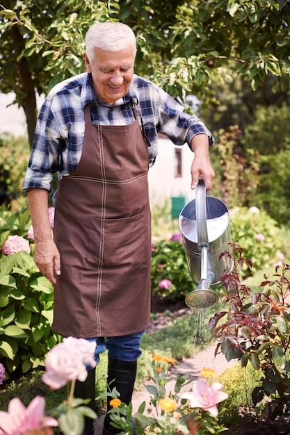 꽃 분야에서 일하는 수석 남자 무료 사진