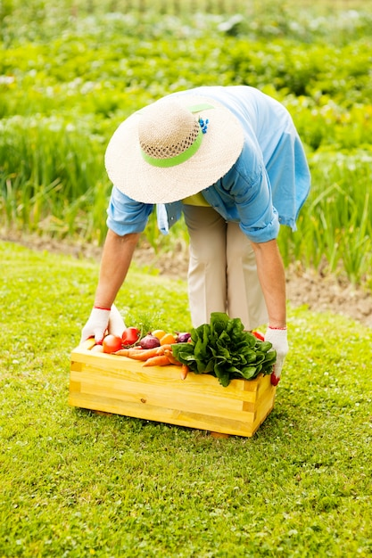 La donna maggiore che prende la scatola ha riempito le verdure fresche Foto Gratuite