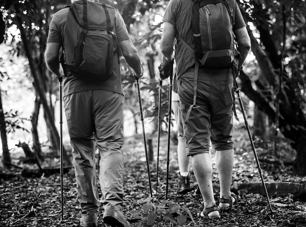 Seniors trekking in a forest Free Photo
