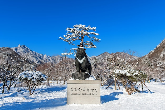 Seoraksan national park in winter location on gangwon, south korea Free Photo