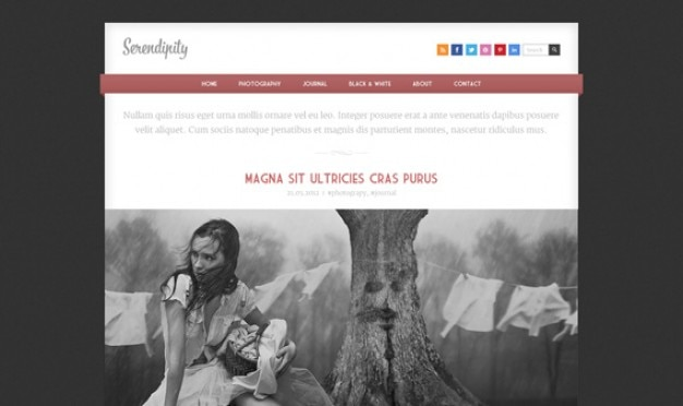 Serendipity - Responsive HTML Template PSD