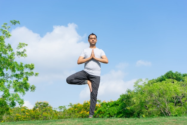 Serene indian man standing in tree yoga pose in park with green bushes Free Photo
