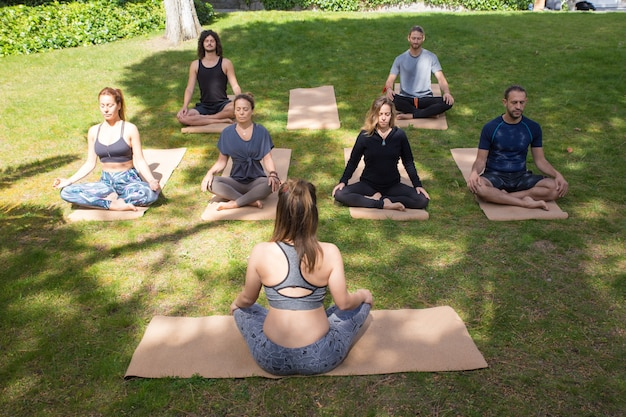Serene peaceful people meditating in park Free Photo