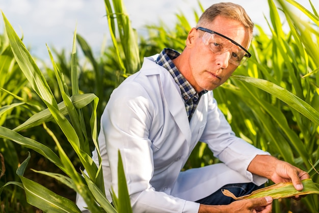 Serious agronomist looking at camera Free Photo