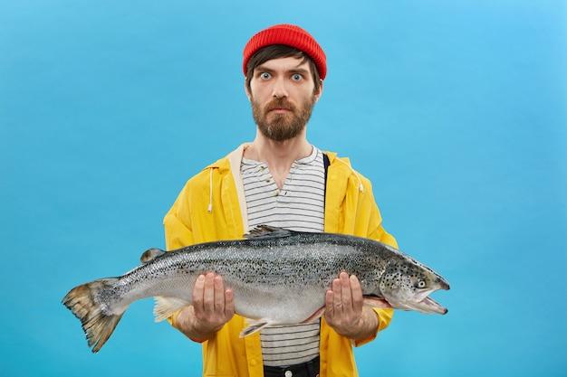 青い目と赤い帽子と青い壁に分離された彼の漁獲量を示す手に巨大な魚を手にした黄色のジャケットを身に着けているひげを持つ深刻な驚いた漁師。釣りのコンセプト 無料写真