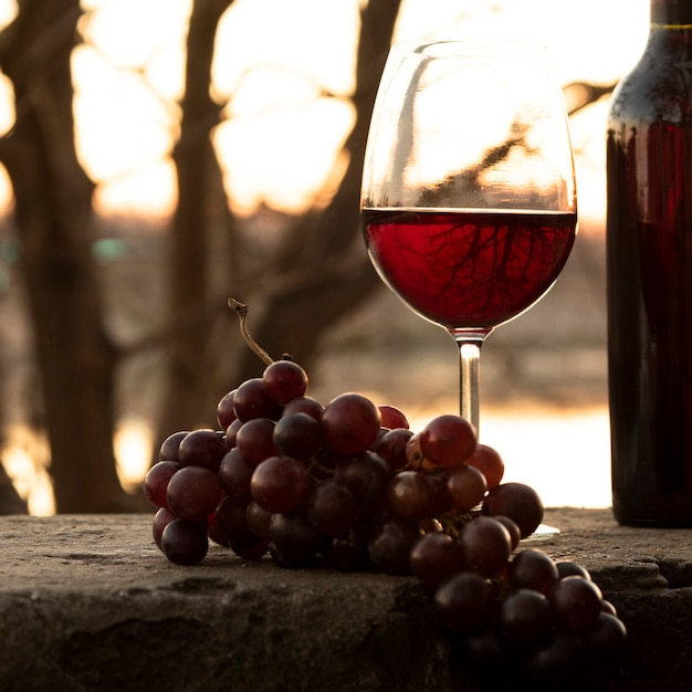 Set of bottle and wine glass in the nature Free Photo