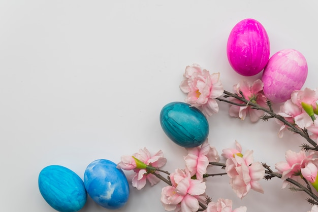 Set of easter eggs and fresh flower twigs Free Photo
