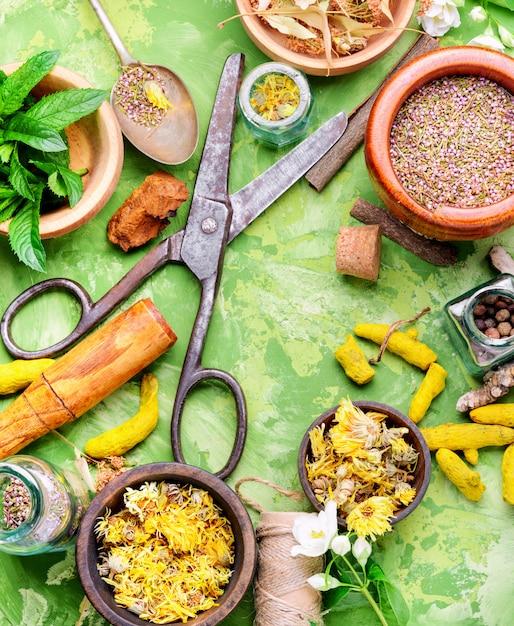 Set healing herbs Premium Photo