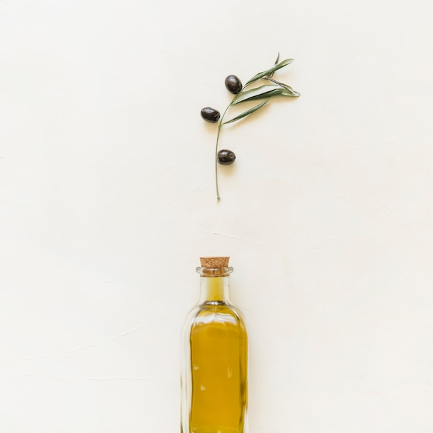 Set of olive branch and bottle with oil Free Photo
