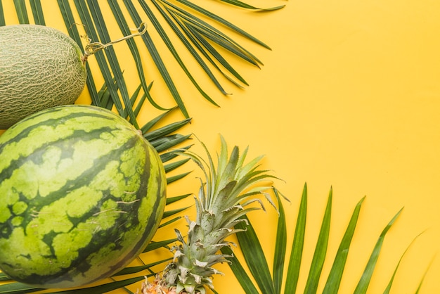 Set of ripe tropical fruits on palm leaves Free Photo