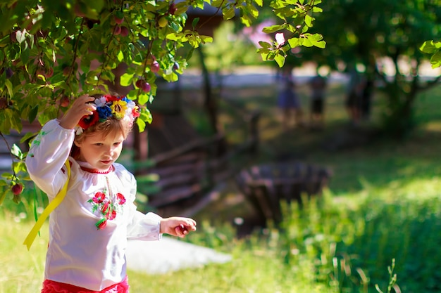 Sets of ukrainian traditional wreaths against the leaves background Premium Photo