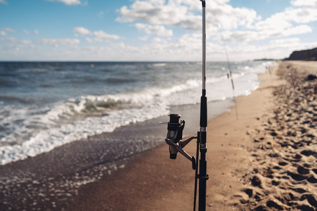 Several fishing rods in a row on the beach Free Photo