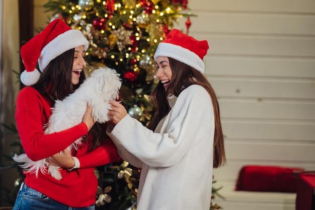 Diverse ragazze giocano con un cagnolino a capodanno a casa Foto Gratuite