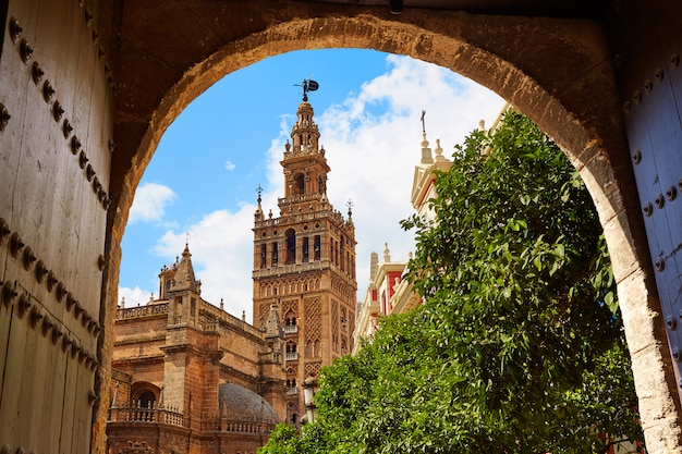 Seville cathedral giralda tower andalusia spain Premium Photo